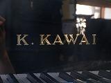 カワイKG-3C(d).jpg