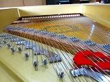 グランドピアノ弦張替5.jpg