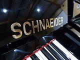 schnaeider(c).jpg
